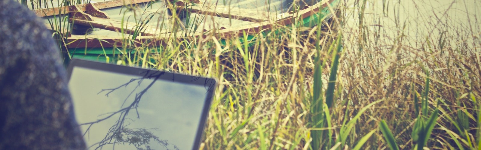Are remote workers more productive than office workers?